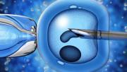 Экстракорпоральное оплодотворение и беременность